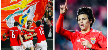 Pedro Marques: The four pillars of Benfica's Academy