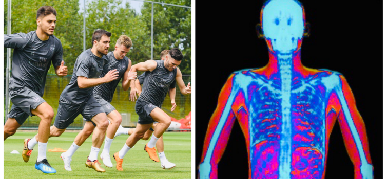 Arsenal have their own DEXA machine, which generates an image like the one on the right