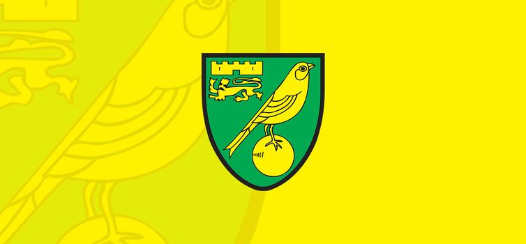 Norwich City Football Club Flag