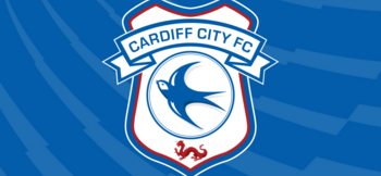 Cardiff City staff profiles